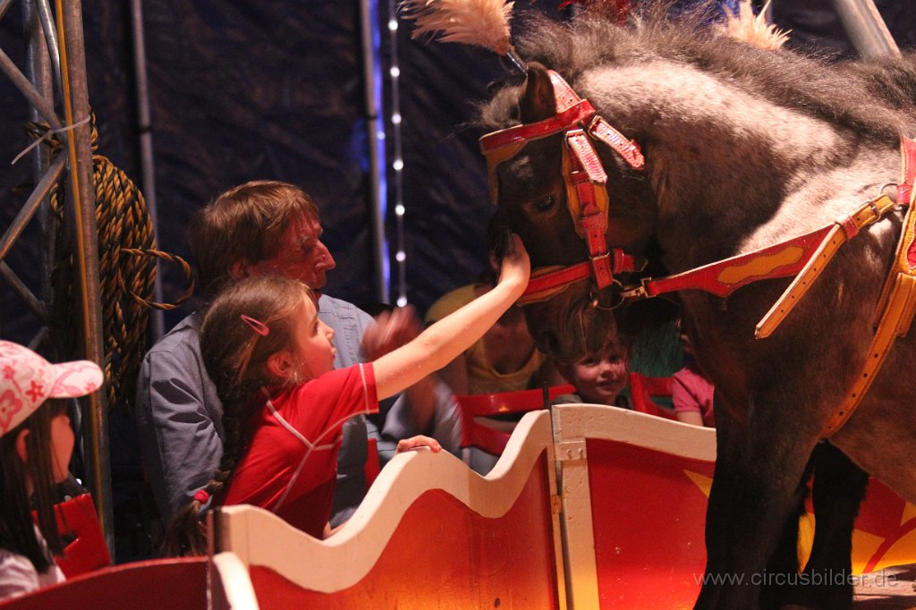 Pony-Power in der Manege